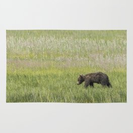 Young Brown Bear Cub, No. 2 Rug