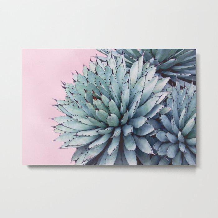 Pink Crush Succulent I Metal Print