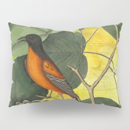 Baltimore Oriole on Tulip Tree, Vintage Natural History and Botanical Pillow Sham