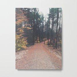 Autumn 17 Metal Print