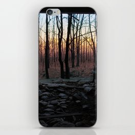 Painted Sky  iPhone Skin