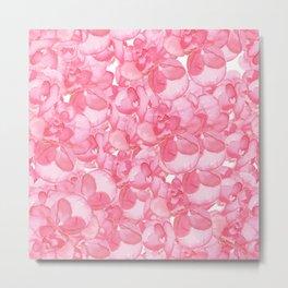Begonia Blooms Metal Print