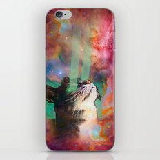 The Ancient Cat Thinking About The Early Days iPhone & iPod Skin