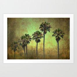 Palms 7 Art Print