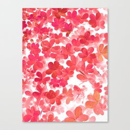 Clover XII Canvas Print