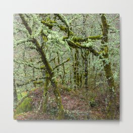 The magical green forest Metal Print