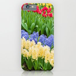 Vibrant flowerbed spring flower park with hyacinth and tulips iPhone Case