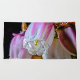 Raindrops on a blueberry flower Beach Towel