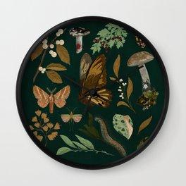 Green Natural Explorer Wall Clock