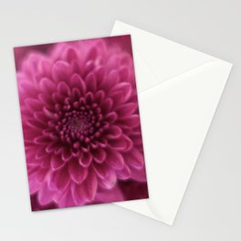 Pinks Stationery Cards