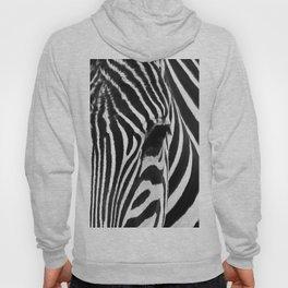 Portrait of Zebra Black and White #decor #society6 #buyart Hoody