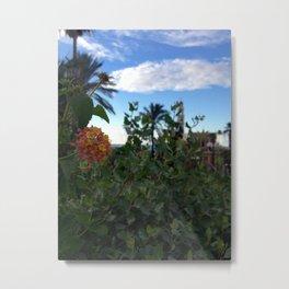 Jaffa Blooms #3 Metal Print