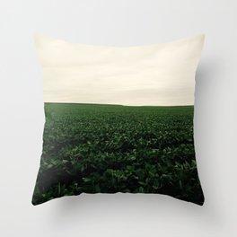 Soybean Skies Throw Pillow