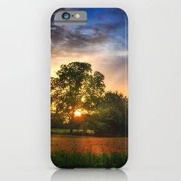 Two trees in the field iPhone Case