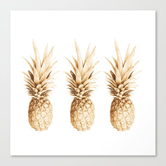 Pineapples and illusion Canvas Print