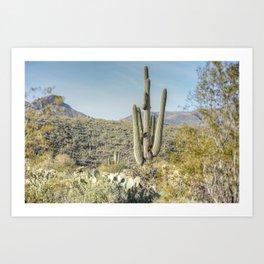 Trees and Cacti  Art Print