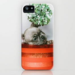 Christmas Pup in a Present with Mistletoe (Color) iPhone Case