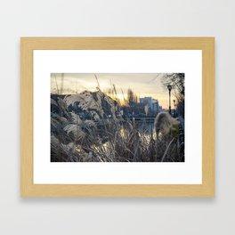 Nature vs City Framed Art Print