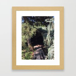 Tree cave in Kubota Garden - Seattle Framed Art Print