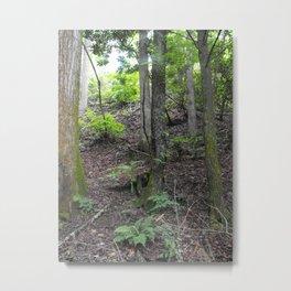 Ramble Metal Print