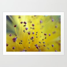 Pollen Pod Points Art Print