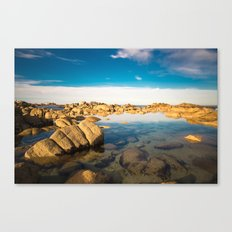 California Coast 1 Canvas Print