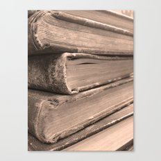 Stacks of Stories  Canvas Print