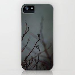 Augury in Grey iPhone Case
