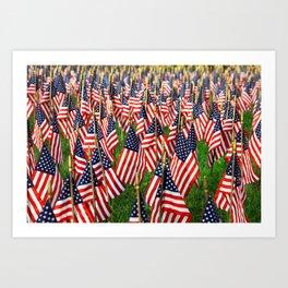 Field Of Flags Art Print