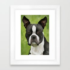 Yoda Pet Portrait Framed Art Print