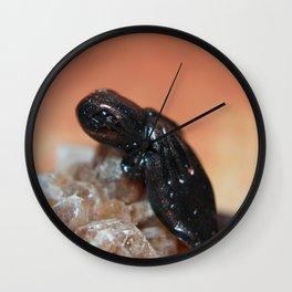 Bronze Dragon on Smokey Quartz Wall Clock
