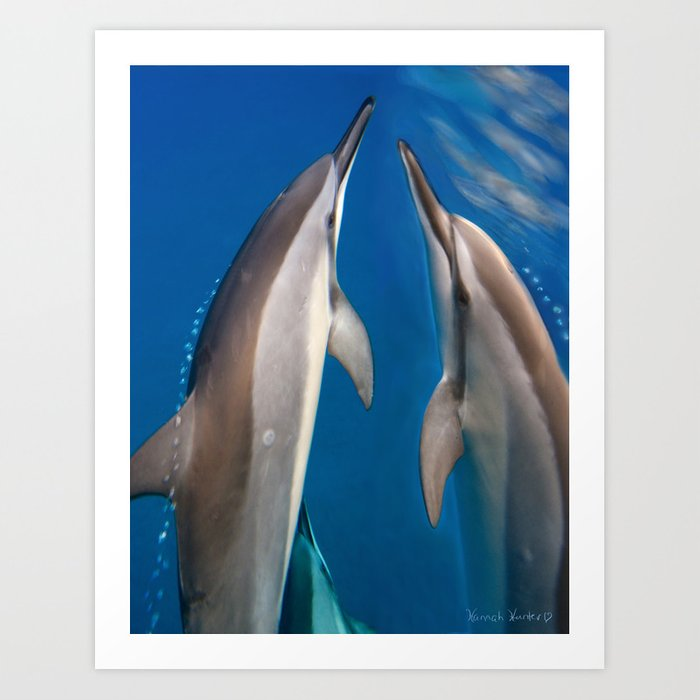 Dolphin Bubbles Art Print