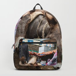 horse by Erik Hathaway Backpack