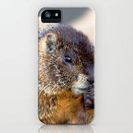 Watercolor Marmot 02, Forest Canyon Tundra, RMNP, Colorado, Don't Drop the Fritos iPhone Case