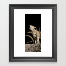 Howling to the Moon Framed Art Print