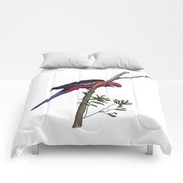 Crimson Rosella Comforters