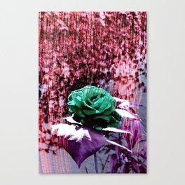 Somewhere 1 Canvas Print