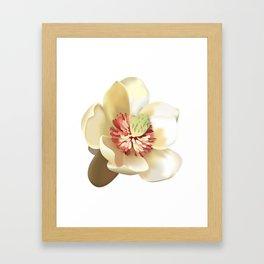 Magnolia! Framed Art Print