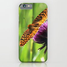 Great Spangled Fritillary iPhone 6 Slim Case