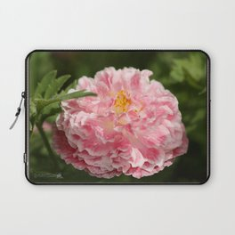 Poppy from the Angel's Choir Mix Laptop Sleeve