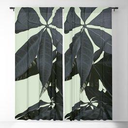 Pachira Aquatica #3 #foliage #decor #art #society6 Blackout Curtain