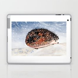 Hedgehog Facing Blizzard Laptop & iPad Skin