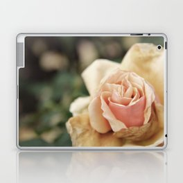 Delicate Rose Laptop & iPad Skin