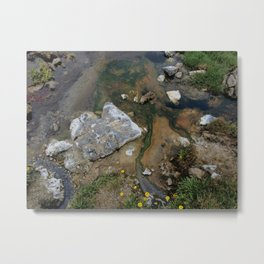 Niche fragmentation Metal Print