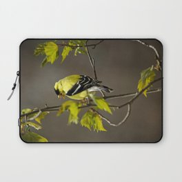 Goldfinch in Song Laptop Sleeve