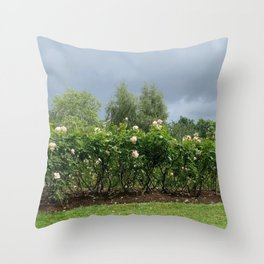 A typical British summer in the park Throw Pillow