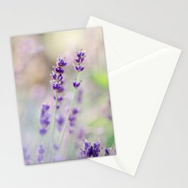 Lavender Loveliness Stationery Cards