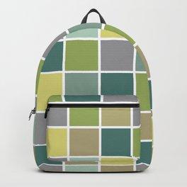 Earthworks - 2 Backpack