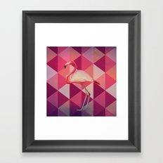 Phoenicopterus Ruber Framed Art Print