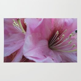 Garden Spring Flowers Pink Rhododendrons Rug